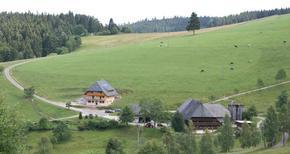 Appartement de vacances 494210 pour 5 personnes , Schonach im Schwarzwald