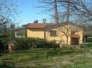 Gemütliches Ferienhaus : Region Cecina für 4 Personen