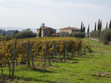Appartement de vacances 626267 pour 2 personnes , Castellina in Chianti