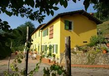 Holiday apartment 627451 for 12 persons in Buggiano