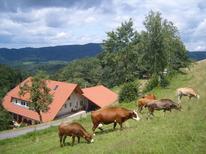 Studio 638301 für 2 Personen in Oberharmersbach