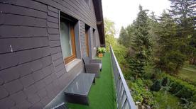 Appartement de vacances 651876 pour 8 personnes , Winterberg-Altastenberg