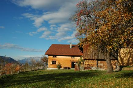 Holiday home 677552 for 9 persons in Dünserberg