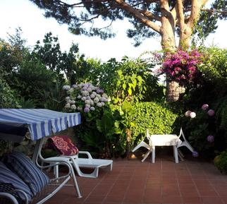 Holiday apartment 73987 for 4 persons in Barano d'Ischia