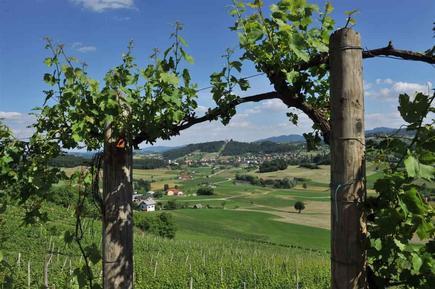 Casa de vacaciones 776193 para 6 personas en Smarje pri Jelsah