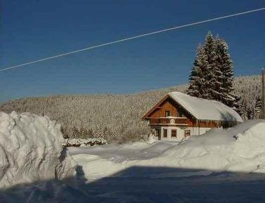 Vakantiehuis 808741 voor 12 personen in Neureichenau