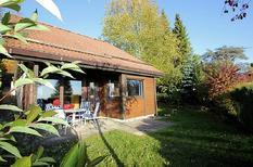 Ferienhaus 841185 für 4 Personen in Öfingen