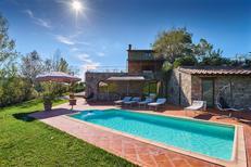 Ferienhaus 913025 für 8 Personen in Gaiole In Chianti