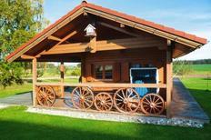 Ferienhaus 916377 für 4 Personen in Kanzach