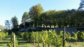 Ferienhaus 922360 für 19 Personen in Serravalle Pistoiese