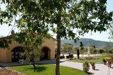 Holiday home 925171 for 6 persons in Castiglion Fiorentino