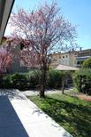 Holiday apartment 933796 for 7 persons in Desenzano del Garda