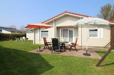 Holiday home 935882 for 4 persons in Renesse