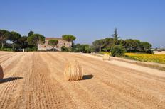 Ferienwohnung 944829 für 8 Personen in Asciano