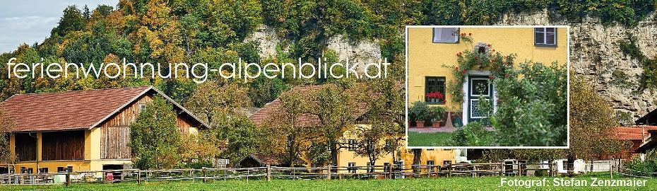 Holiday apartment 946790 for 2 adults + 3 children in Kuchl