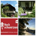 Holiday apartment 946821 for 2 adults + 2 children in Feldberg im Schwarzwald