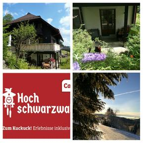 Studio 946821 for 2 adults + 2 children in Feldberg im Schwarzwald