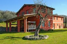 Maison de vacances 956465 pour 10 personnes , Massarosa