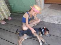 Holiday home 977747 for 2 adults + 2 children in Bergerac